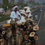 India: Street Scenes
